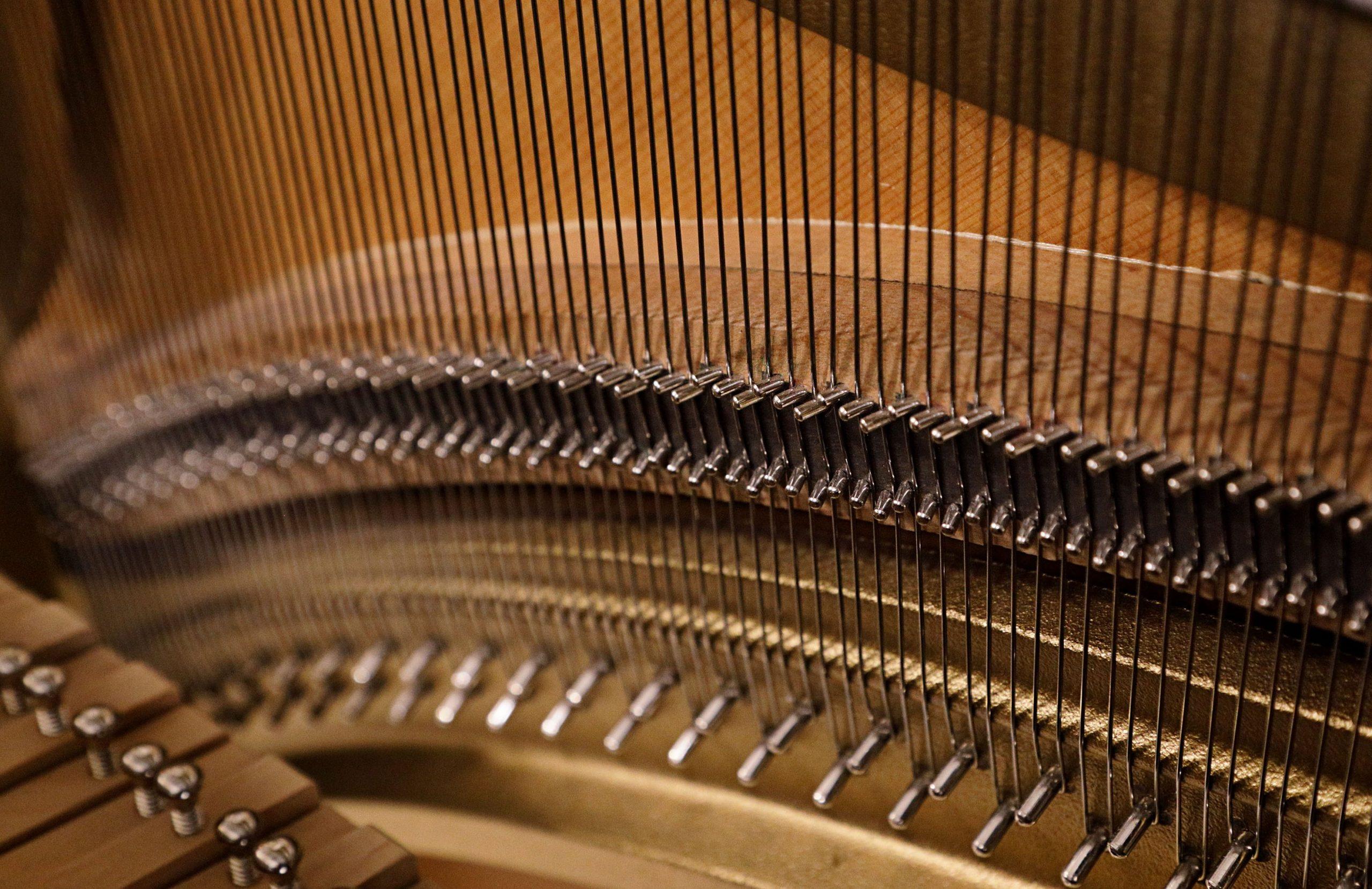 Ammattitaitoa täydentävää koulutusta pianonvirittäjille
